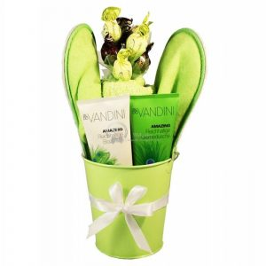 Green My Day – Spa Gift Basket
